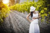 Pretty girl in the vineyard — ストック写真
