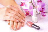 Beautiful french manicure with pink orchid on the white — Stock Photo