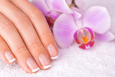 Beautiful manicure with pink orchid on the white — Foto de Stock