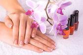 Krásná manikúra s růžovou orchidej na bílý ručník — Stock fotografie