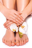 Woman's manicured hand and pedicured feet with orchid flower — Stock Photo