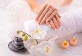 Belle mani con manicure e wnite orchidea fiori — Foto Stock