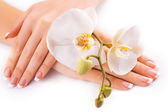 Beautiful french manicure with white orchid on white — Stock Photo