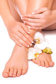 Manicure and pedicure with white orchid. isolated — Stock Photo