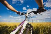 Mountain biking in the field. — Foto de Stock