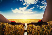 Mountain biking in the field. View from bikers eyes. — Stock Photo