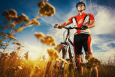 Man is riding bicycle outside in the field — Stock Photo