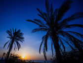 Sunset Divine Evening Scene — Stock Photo