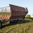 Stock Photo: Making silage stocks