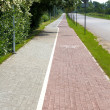 Paved sidewalk — Stockfoto