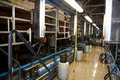 Milking Cows on farm — Stock Photo