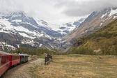 швейцарский горный поезд бернина экспресс — Стоковое фото