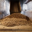 Potatoes in storage house — Stock Photo