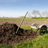 Organic fertilizer — Foto Stock