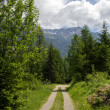 Stock Photo: A country road in the Swiss Alps