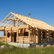 Stock Photo: House built from logs