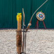 Archery Attraction — Stock Photo