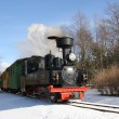 Little steam locomotive — 图库照片 #23110994
