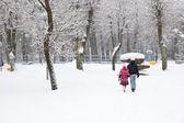 City kar yağışı — Stok fotoğraf
