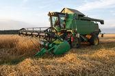 Grain combine — Stock Photo