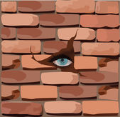 Hole in the wall of bricks — Stock Vector