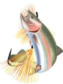 Vis zalmforel — Stockvector