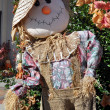 Stock Photo: Arts and crafts scarecrow