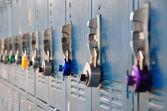 Bank of blue school lockers — Stock Photo