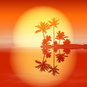 Sea sunset with island and palm trees. — ストックベクタ