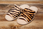 Slippers on wooden floor — Stock fotografie