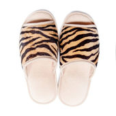 Slippers isolated on white background — Stock Photo