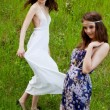 Young girls on the meadow — Stock Photo #43369873
