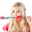 Woman with rose between teeth — Stock Photo