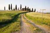 The Tuscan Land — Stock Photo