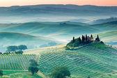 El paisaje toscano — Foto de Stock