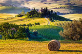 Tuscan Morning countryside — Stock Photo