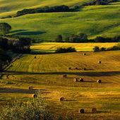 Tuscany - scenic landscape — Stock Photo