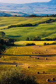 Tuscany - scenic landscape — Stock Photo