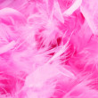 Closeup of pink boa feathers — Stock Photo