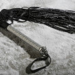 A whip with leather strokes — Stockfoto