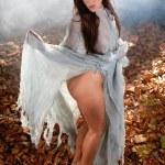 Beautiful woman as witch — Stock Photo #40708101