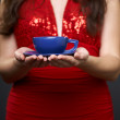 Manicured hands young woman in a red dress. Hands holding a blue - Stockfoto