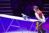 Circus number with bird — Stock Photo