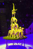 Circus number — Stock Photo