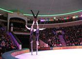 Circus show — Stock Photo