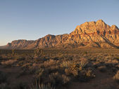 Morgendämmerung licht wüste von nevada — Stockfoto