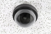 Overhead Security Camera Globe — Stock Photo