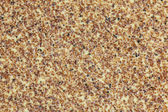 Sandpaper Extreme Macro Background — Stock Photo