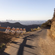 Rough Road in LA's Griffith Park — Stock Photo