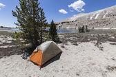 High Sierra Backpack Tent Site — Стоковое фото